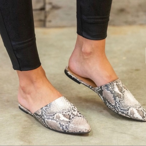 09477dc25 Qupid Shoes | Snakeskin Pointed Toe Mules Flats | Poshmark